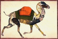"Anonymous Indian artist,""Composite Camel,"" 19th century"