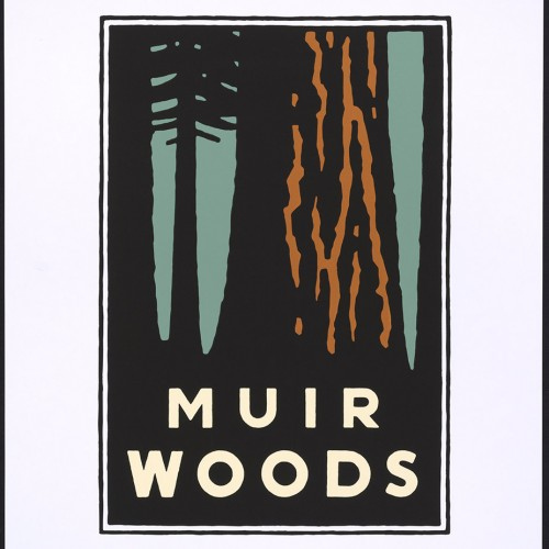 "Michael Schwab, ""Muir Woods"", from a series of posters for the Golden Gate National Parks, 1995. Color screenprint, 28 3/4 x 22 1/16 in. (73 x 56 cm). FAMSF, gift of the artist in memory of Paul and Ellie Traugh, 1999.85.37"