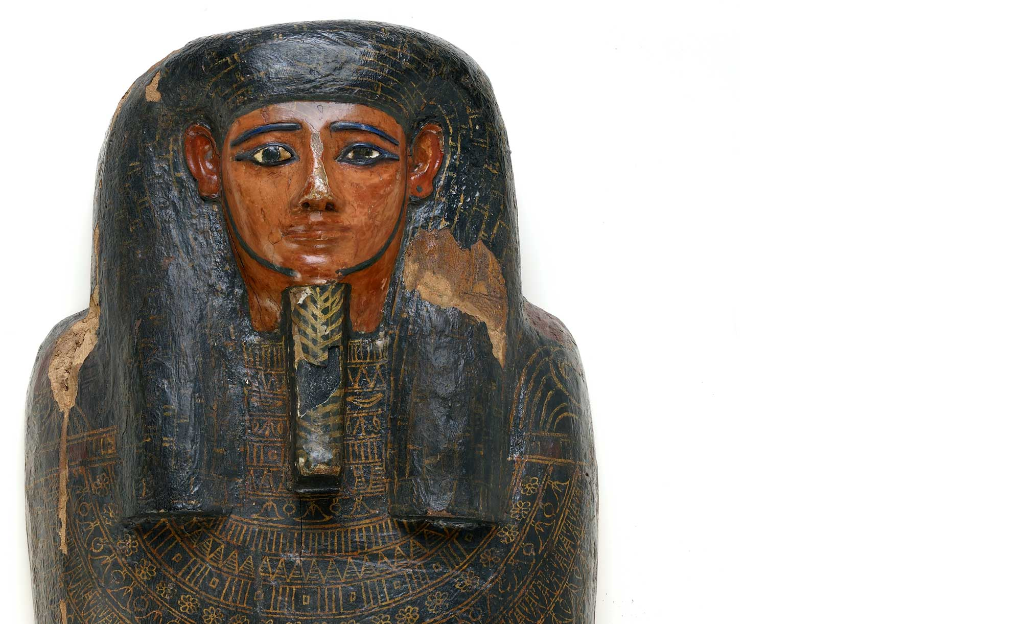 The Future of the Past: Mummies and Medicine